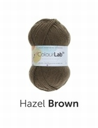 WYS Colour Lab DK Hazel Brown (491)