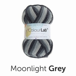 WYS Colour Lab DK Moonlight Grey (895)