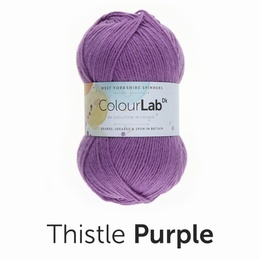WYS Colour Lab DK Thistle Purple (717)