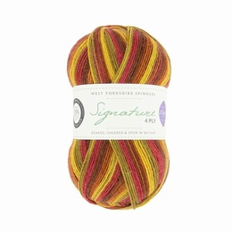 Winwick Mum WYS 4 Ply Autumn Leaves 885