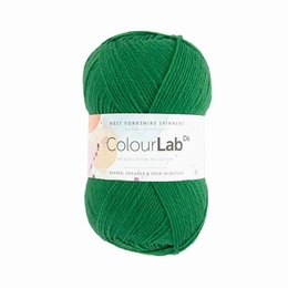 WYS Colour Lab DK Bottle Green 363