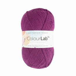 WYS Colour Lab DK Perfectly Plum 361