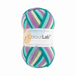 WYS Colour Lab DK Purple Rain 951